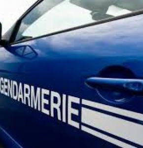 gendarmerie voiture bleue.jpg