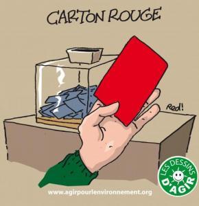 49_CARTON_ROUGE.JPG