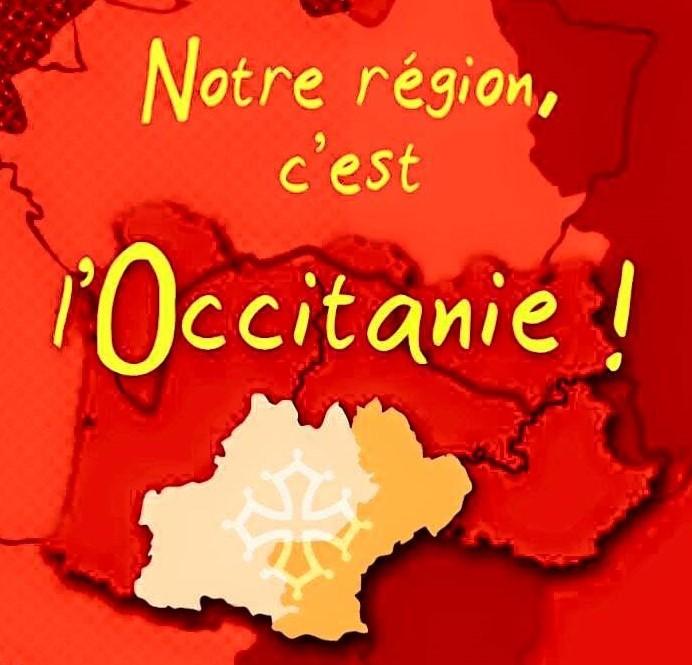 """Résultat de recherche d'images pour """"nouveau drapeau occitan"""""""