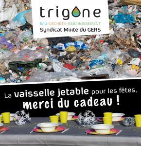 Trigone vaisselle jetable.jpg
