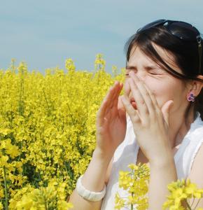 allergies-pollens.jpg