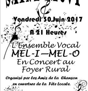 concert fête locale.jpg