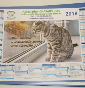 Chapatounes Calendrier 2018.JPG