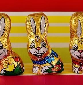 chocolate-bunnies-2117500_960_720.jpg
