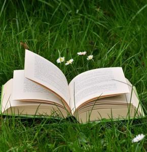 book-2224934_960_720.jpg