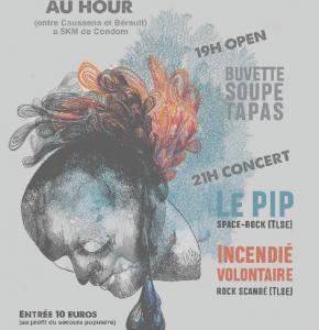Concert du HOUR.jpg