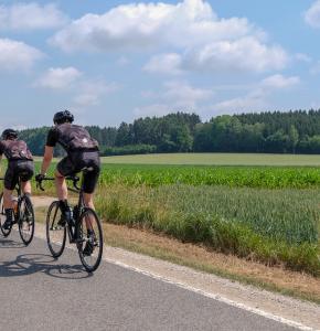 Vélo road-bike-3469499_960_720.jpg