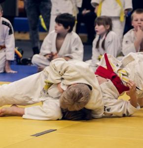 judo-4454835_960_720.jpg