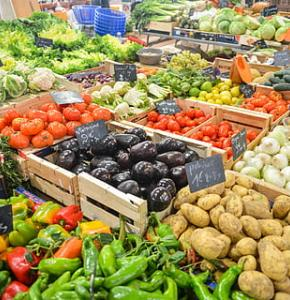 aubergines-bio-cabbage-eggplants-thumbnail.jpg