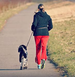 woman-person-jogging-dog.jpg
