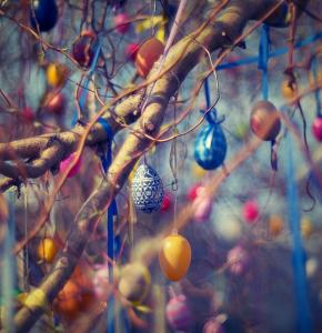 Paques art-blur-branches-bright.jpg