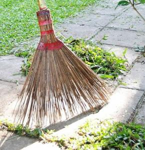Balai nettoyage.JPG