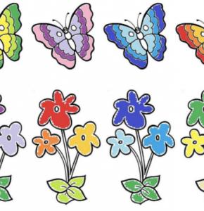 Papillons ergo ter.PNG