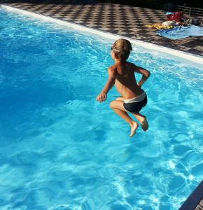 pool-1227098_960_720.jpg