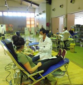 Collecte de sang 0200416110532ZoMW.jpg