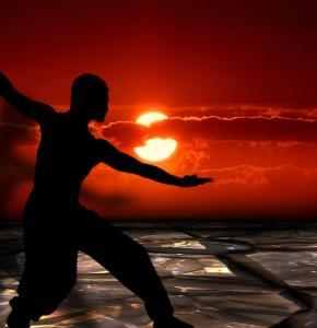 martial-arts-291046_960_720 (1).jpg
