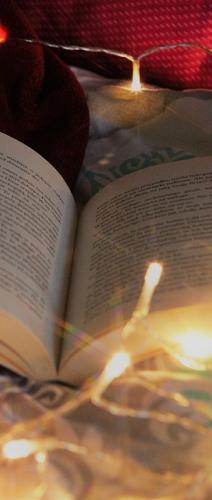 reading-3942986_960_720.jpg