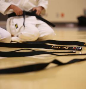 Karaté black-belt-894190_960_720.jpg