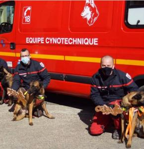 chiens pompiers 32.JPG