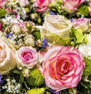 flowers-3441662_960_720.jpg