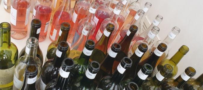 Bouteilles vins.JPG