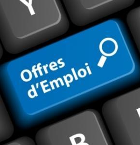 optimiser-sa-recherche-emploi-sur-le-web_b.jpg