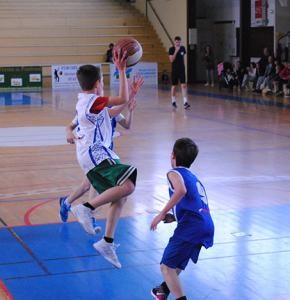 basket mirande.jpg